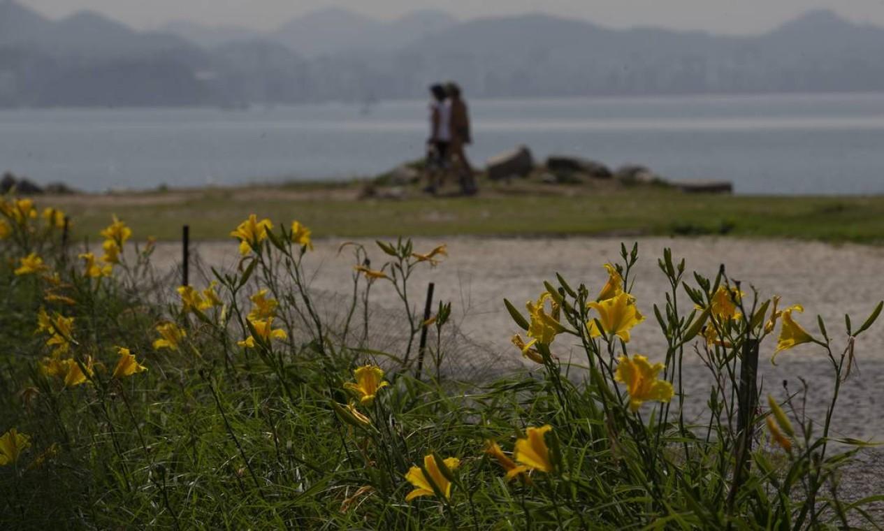 Casal se beija em paisagem florida no Rio Foto: Márcia Foletto / Agência O Globo