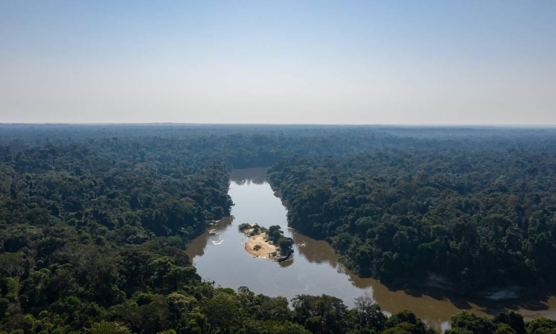Projeto Fazenda Fortaleza Ituxi, em Lábrea, sul da Amazônia Foto: Divulgação