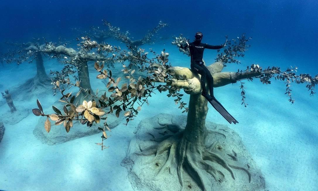 O mergulhador cipriota Angels Savvas senta numa das esculturas de árvores do Musan, o novo museu subaquático do artista Jason deCaires Taylor, na cidade de Ayia Napa, no Chipre Foto: EMILY IRVING-SWIFT / AFP
