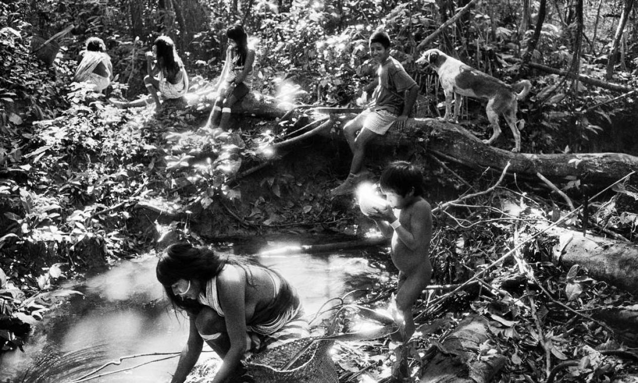 Floresta Amazônica Foto: © Sebastião SALGADO / Divulgação