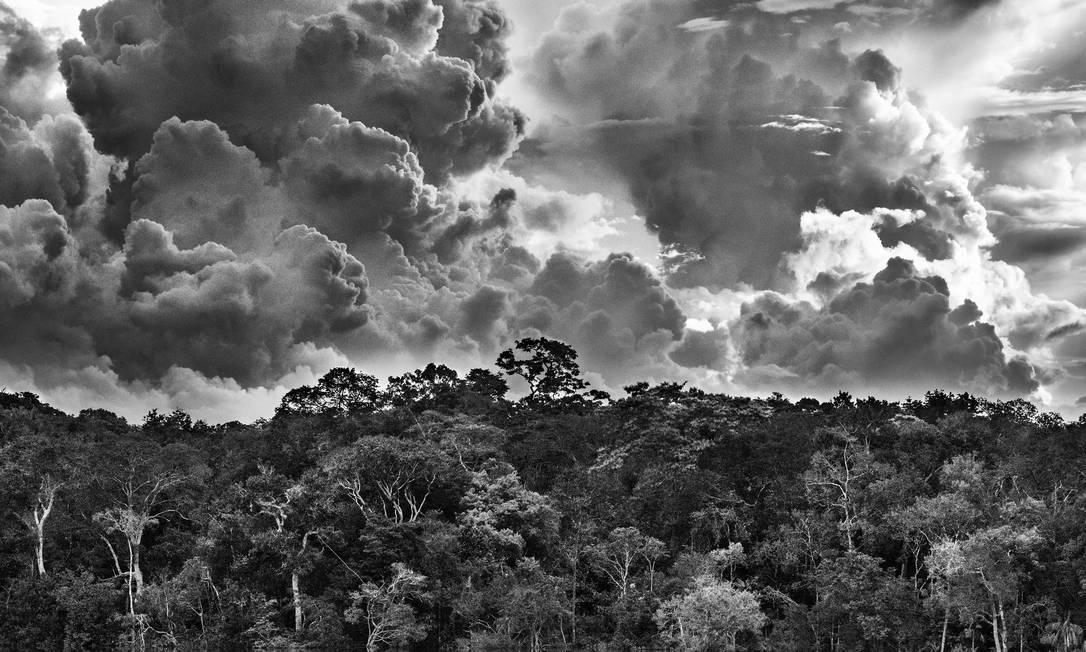 Exposição Amazônia, de Sebastião Salgado Foto: Sebastião SALGADO / Divulgaçao