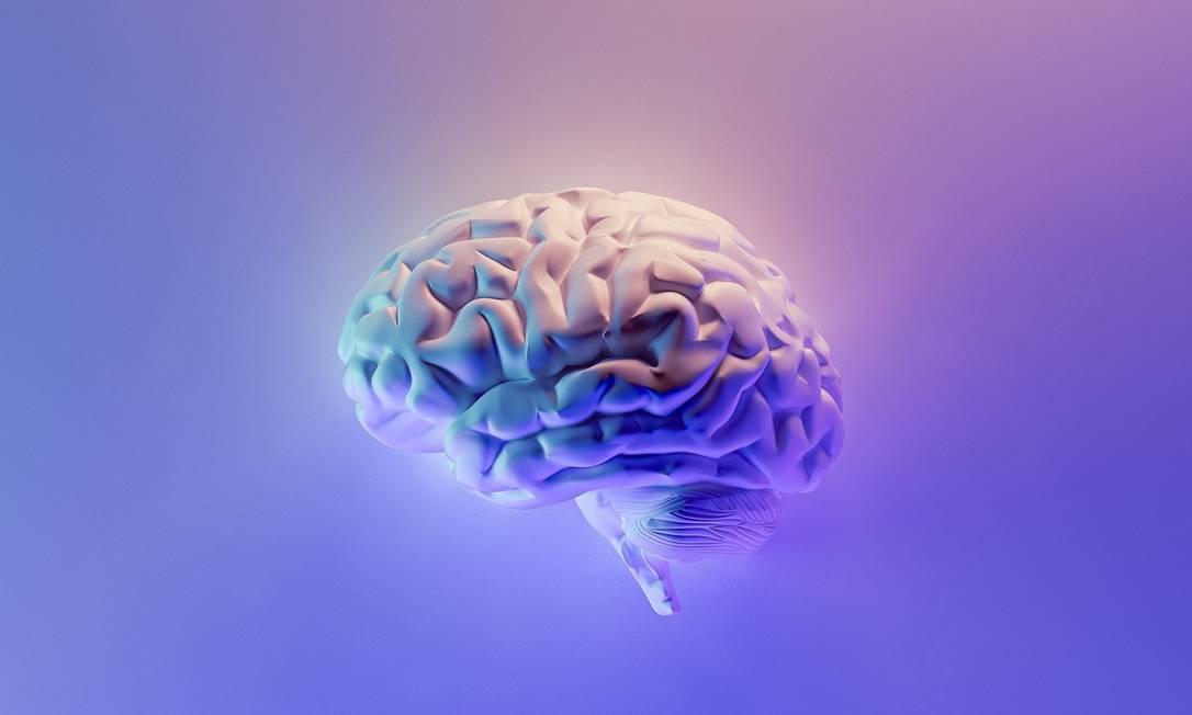 Ingestão de alimentos saudáveis pode reduzir inflamações e até afastar risco de Alzheimer. Foto: Unsplash Foto: Unsplash