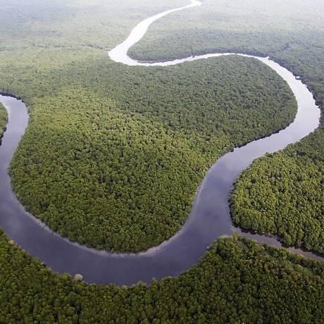 A unidade de conservação: remanescente verde da Guanabara (Foto: Custódio Coimbra Agência O Globo)