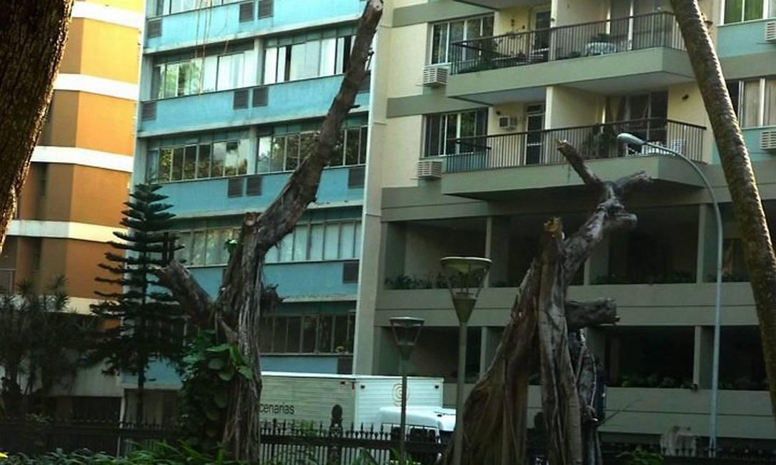 Eu-repórter: poda no Museu da República deixa árvores sem galhos Foto da leitora Denise Weller