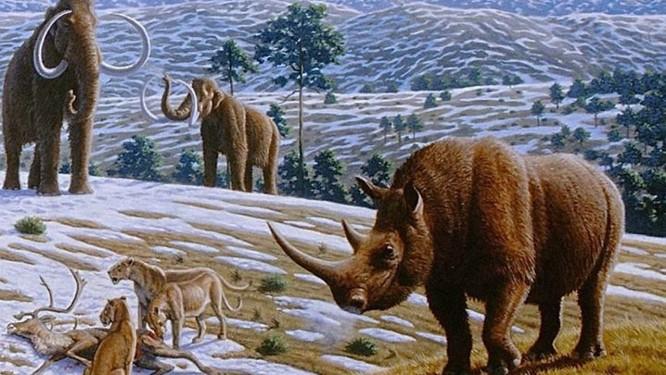 Ilustração do mamífero cujo fóssil foi encontrado e teria inspirado mitos da Grécia Antiga Discovery News