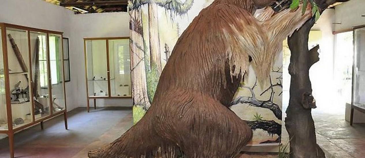 Instalações do Parque Paleontológico de São José Foto: Divulgação