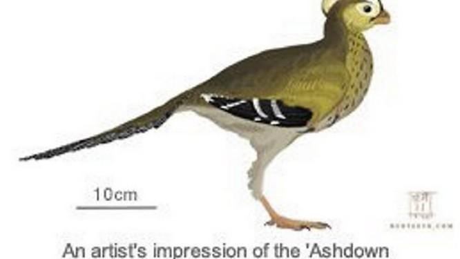 Ilustração do que pode ser o menor dinossauro do mundo Reprodução