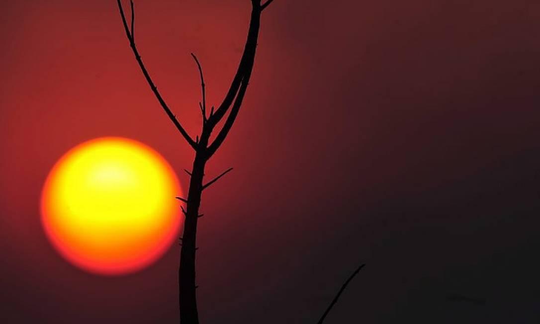 Incêndio no Parque Nacional de Brasília é um dos piores dos últimos anos - Marcello Casal JrAgência Brasil