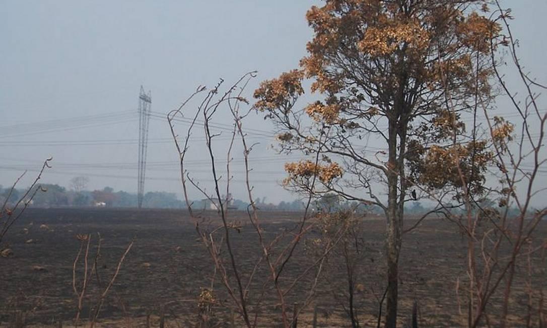 Eu-Repórter: queimadas em Tocantins Foto do leitor José Bezerra Junior