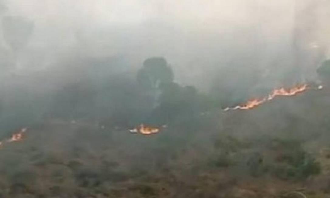Incêndio na Ilha do Bananl, em Tocantins - Reprodução TV Globo