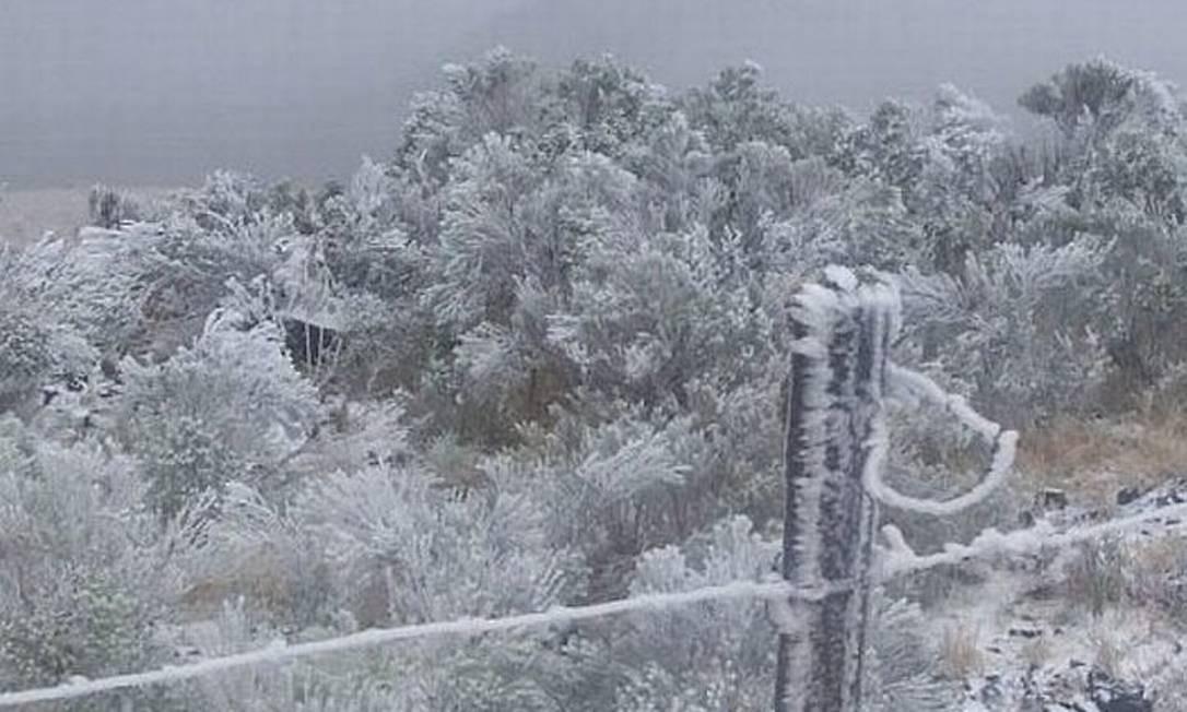 Paisagem tingida de branco em cidades do Sul do país após nevada - Foto MetSul