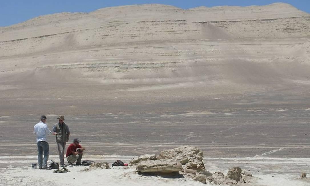 O local onde o fóssil foi encontrado, no Peru Foto: Nature
