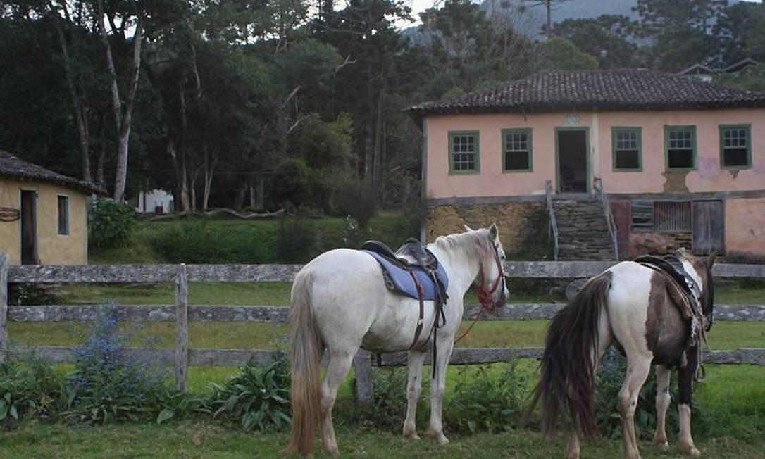 Cavalos na frente do Casarão do Matutu, onde é possível contratar guias para percorrer as trilhas da região Foto: Bruno Agostini