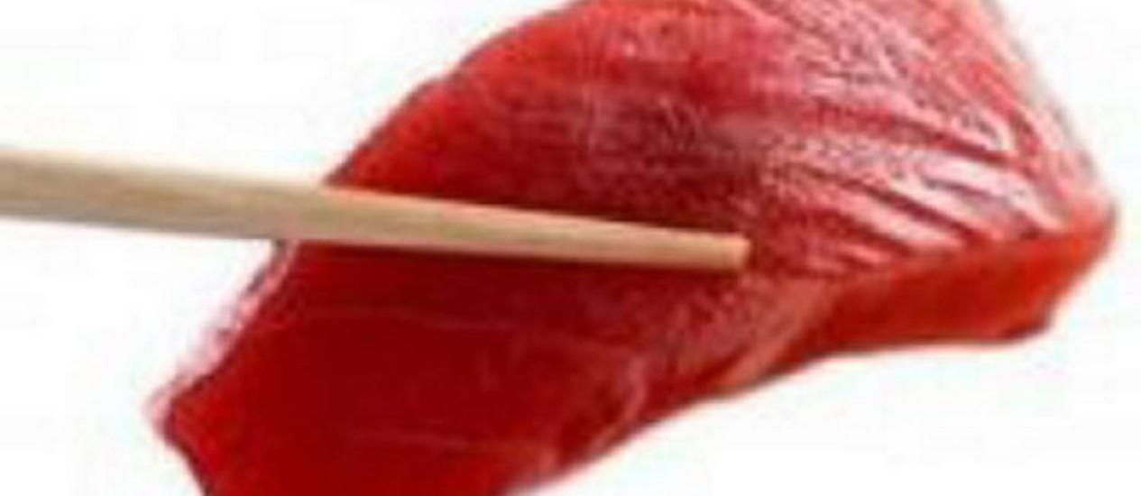 Consumo do atum deve ser reduzido Foto: Divulgação