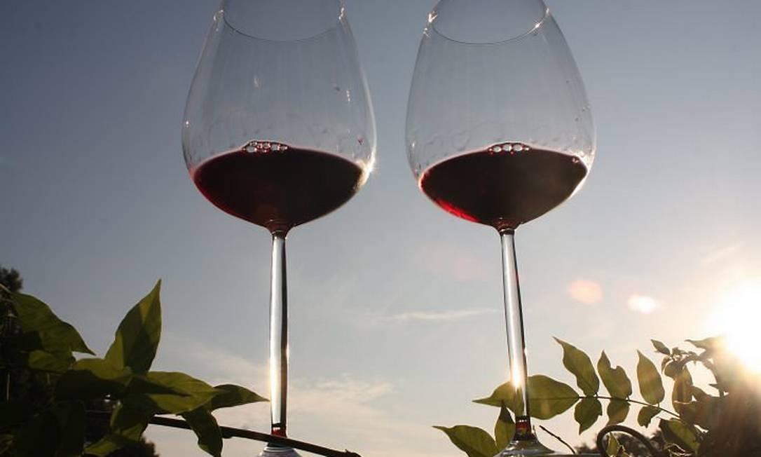Vinícolas do Aletejo têm o maior nível médio de qualidade em Portugal Foto: Bruno Agostini