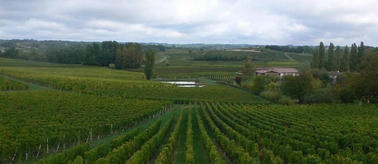 Os vinhedos, comoeste en Saint-Emillion, dominam a paisagem na região da Aquitânia Foto: Paulo Motta