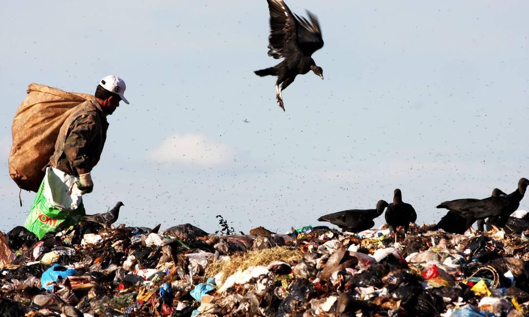 Catadores de lixo recolhem material reciclável no lixão da Estrutural, em Brasília Foto: Ailton de Freitas / O Globo