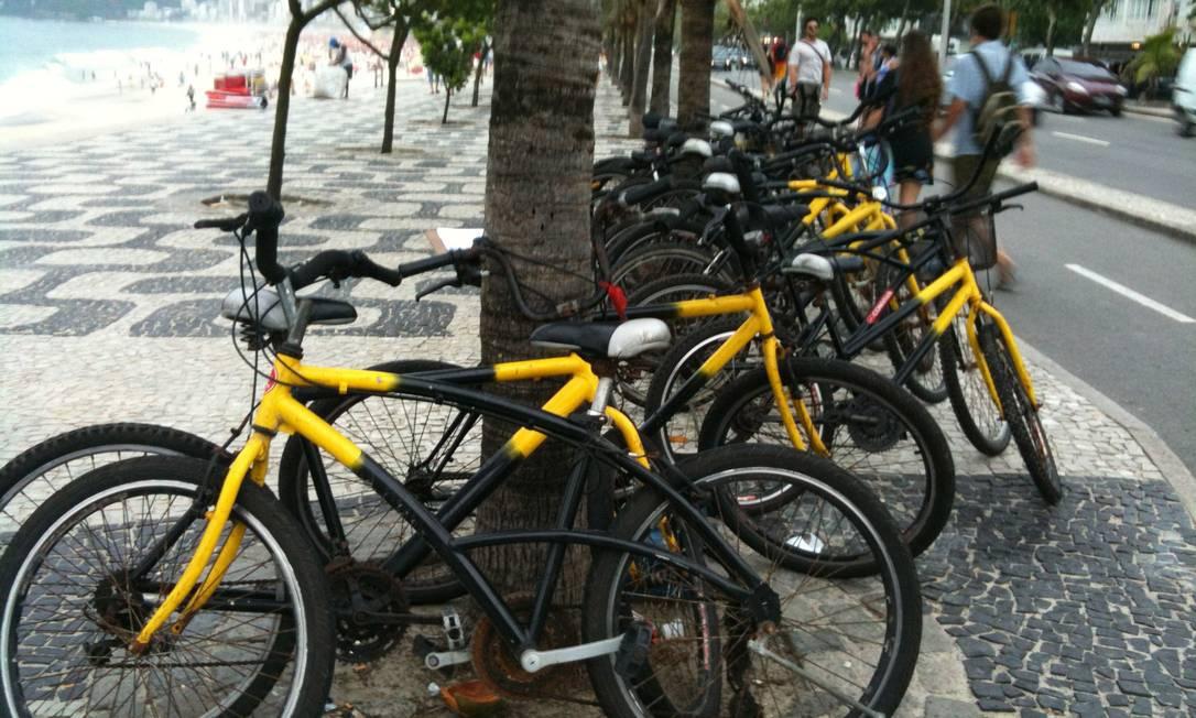 Bicicletas amarradas a coqueiros na orla Foto: Elenilce Bottari / O Globo