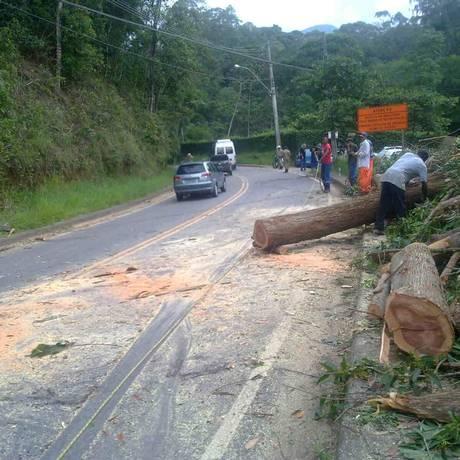 Árvore é podada na Estrada de Itaipava-Teresópolis, na altura de Quebra-Frasco e trânsito funciona em esquema de pare e siga. Foto: Natasha Mazzacaro