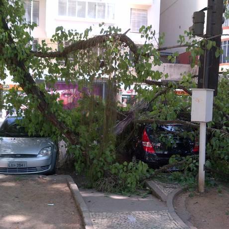 Árvore cai e atinge carros na Rua Gago Coutinho, no Largo do Machado Foto: Foto do leitor Rodrigo Purchio
