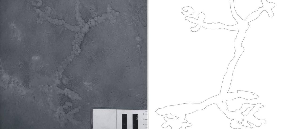 """""""Paradinho"""", grafismo encontrado na Lapa do Santo, em Minas Gerais, pode ser a gravura rupestre mais antiga das Américas, com mais de 10 mil anos Foto: Divulgação"""