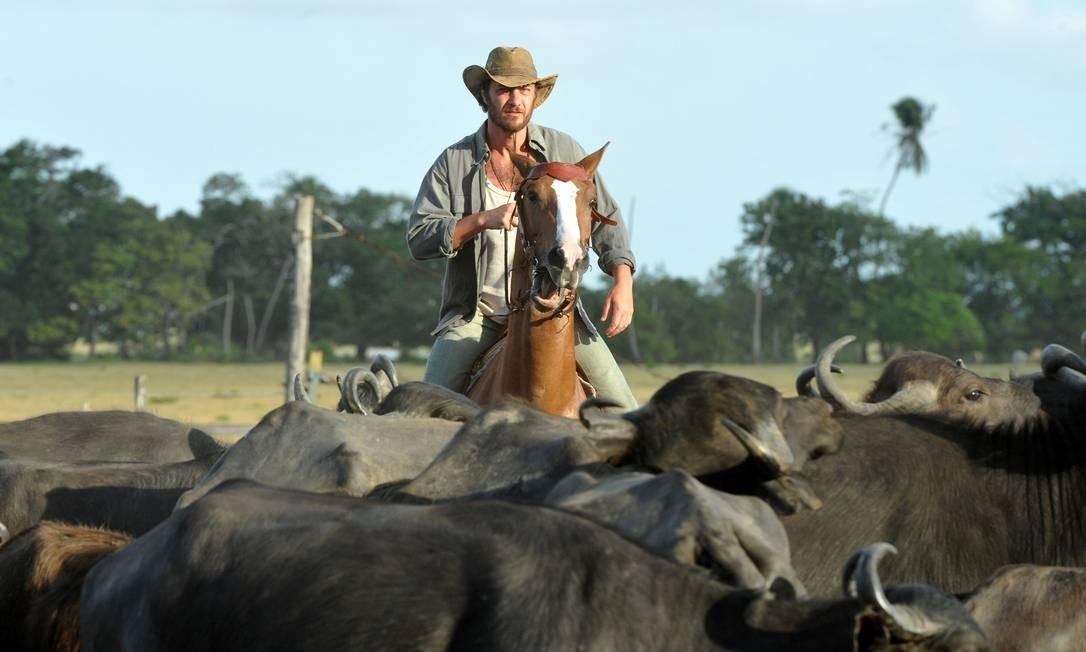 O protagonista Carlos/Rodrigo (Gabriel Braga Nunes) em meio aos búfalos Foto: TV Globo/Alex Carvalho
