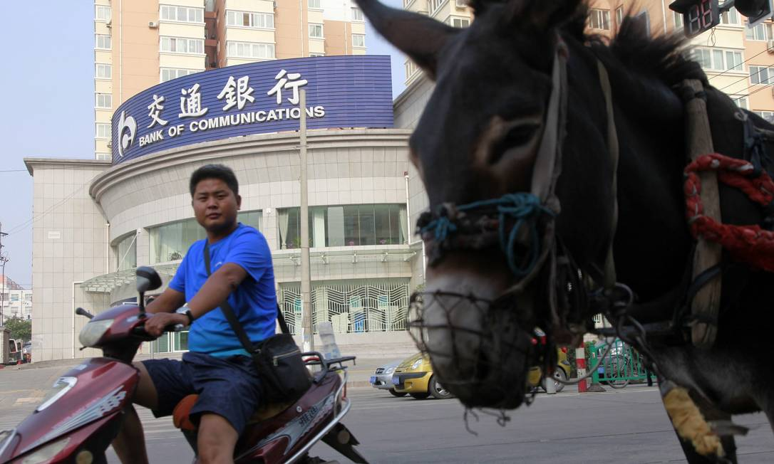 Chineses pretendem importar 300 mil jumentos por ano do Nordeste Foto: Qilai Shen / Bloomberg
