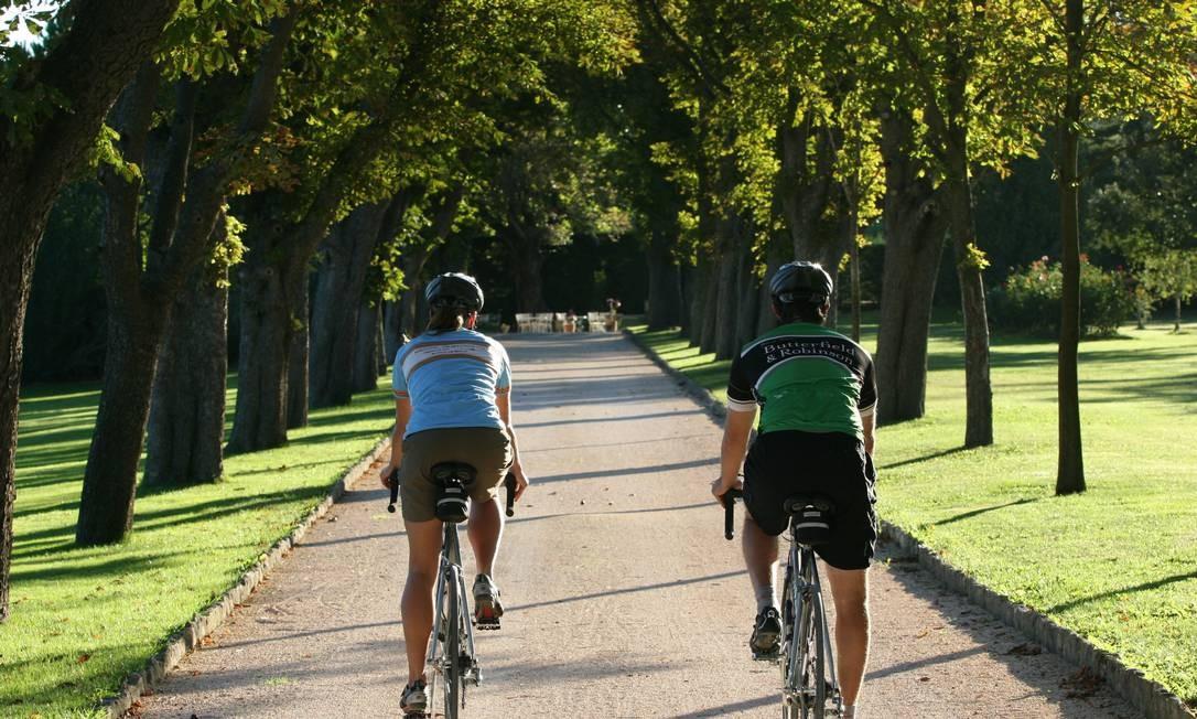 Ciclistas precisam tomar alguns cuidados para evitar problemas na região genital Foto: Divulgação