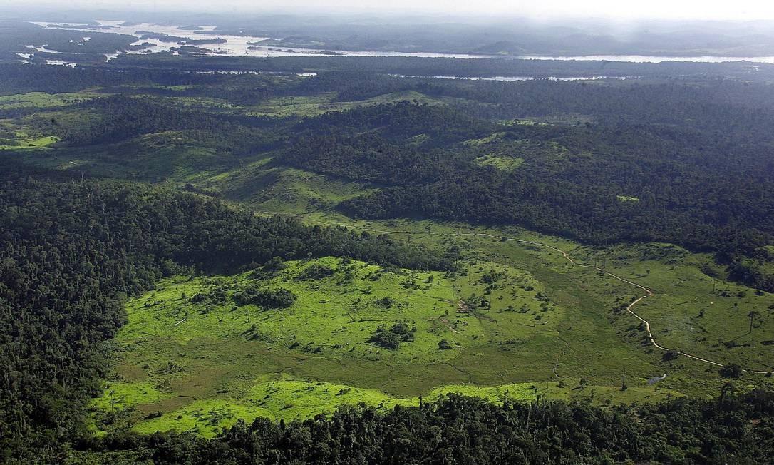 Região desmatada convertida em savana no meio da floresta Foto: Antonio Scorza/AFP