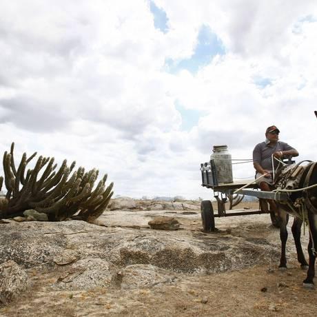 Desertificação em Irauçuba, no interior do Ceará Foto: Arquivo