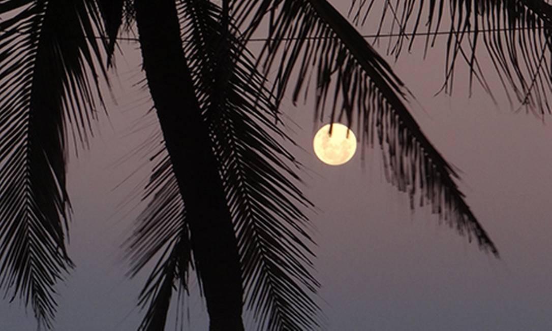 Lua cheia surge entre os coqueiros em Ipanema Foto: Foto do leitor José Conde / Eu-Repórter