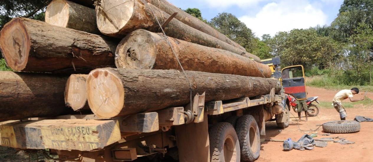 Caminhão transporta madeira no interior do Maranhão. Foto: ISMAR INGBER / Greenpeace
