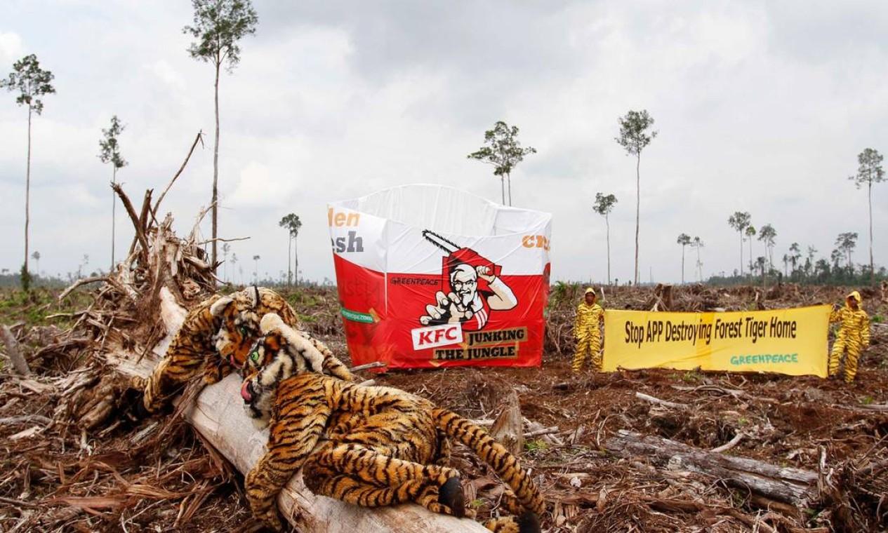 Grupo de ativistas simulam embalagem KFC gigante em uma área de floresta de turfa recentemente invadida em Singapura Foto: MELVINAS PRIANANDA / Greenpeace/AFP - 30/05/2012