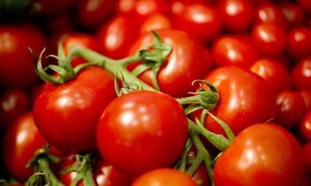 Reserva adicional de genes garantiu sobrevivência dos tomates Foto: AFP