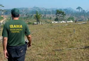 Fiscal do Ibama em ação Foto: Arquivo - Agência Brasil