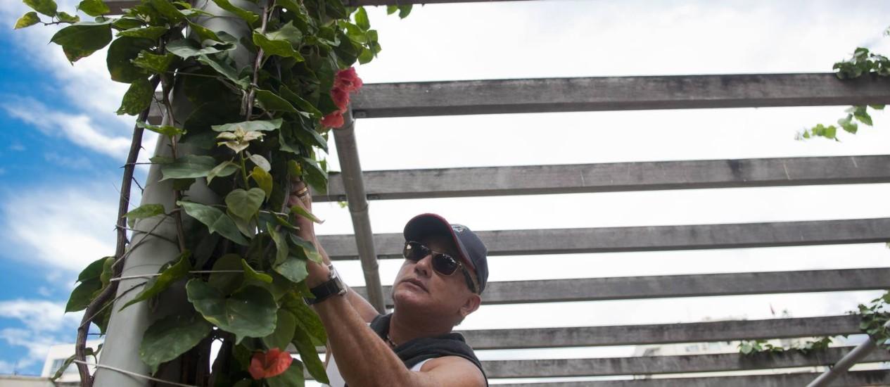 Em Botafogo, Elias Serra plantou mudinhas em torno do caramanchão central da praça Mauro Duarte Foto: Paula Huven