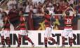 Bottinelli comemora o gol da vitória do Flamengo sobre o Santos