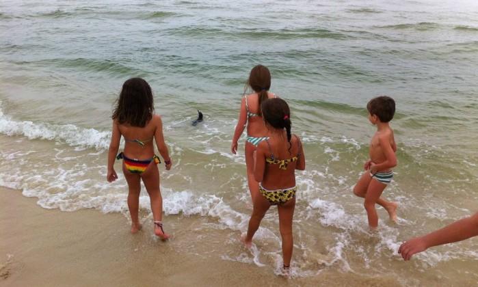 Crianças observam pinguim que apareceu na Praia da Barra da Tijuca neste final de semana Foto do leitor Joseph Lopes / Eu-repórter