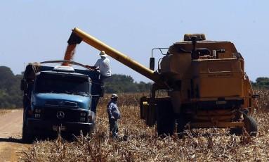 Agronegócio em Lucas do Rio Verde, Mato Grosso Foto: Gustavo Stephan / Arquivo O Globo