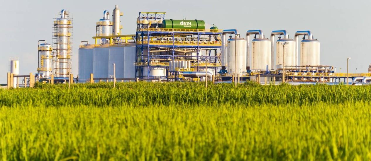Resultado de imagem para Produção de etanol