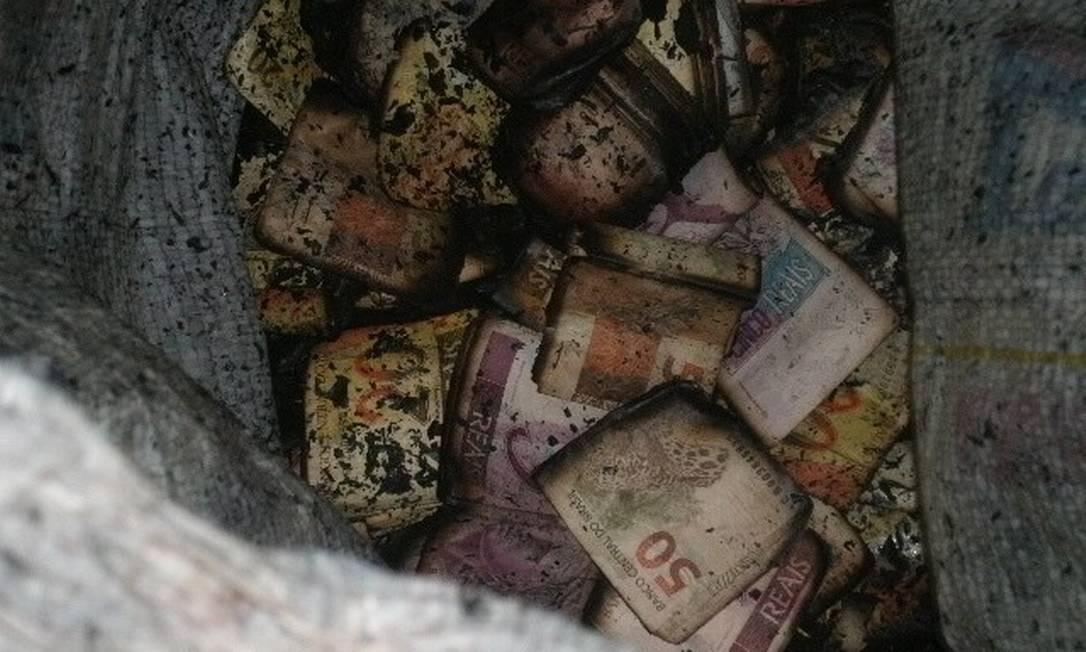 Parte do dinheiro queimado após fogo em veículo Foto: PRF / Divulgação