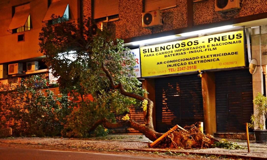Cerca de 25 toneladas de troncos, galhos e folhas foram retirados até o começo da manhã desta sexta, afirma Comlurb Foto do leitor Felipe Pilotto / Eu-Repórter