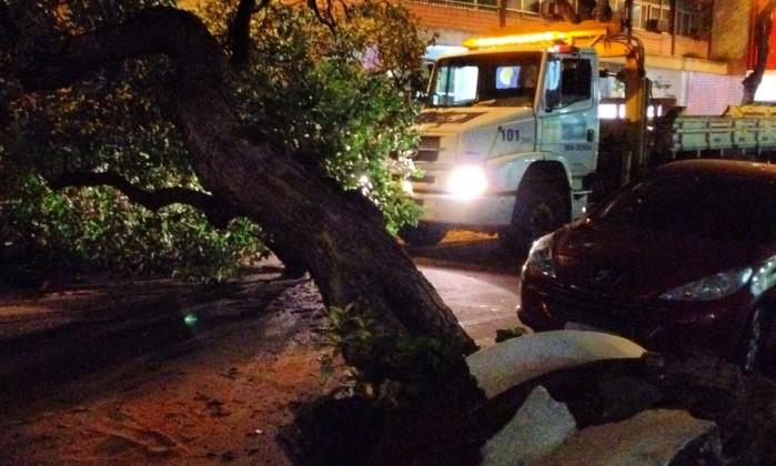 Na Rua Bolivar, tráfego também foi interrompido por conta da queda de árvores Foto da leitora Talita Chaves / Eu-Repórter