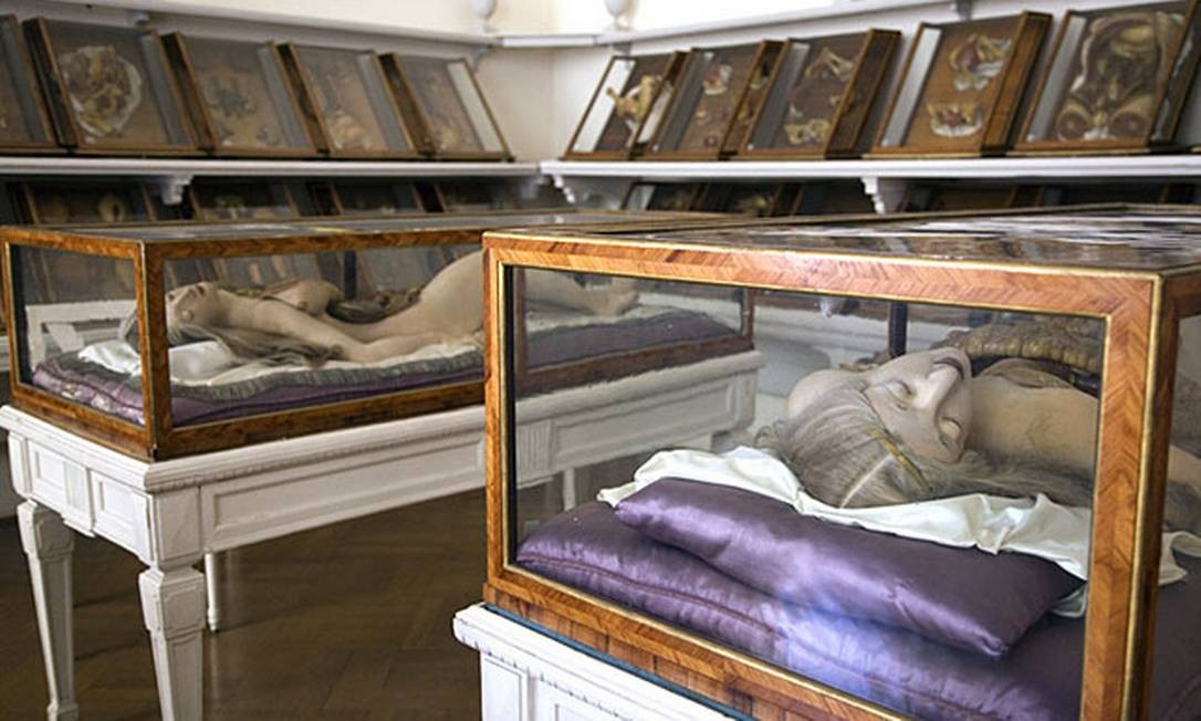Modelos anatômicos em cera expostos em uma das salas da The Morbid Anatomy Library Foto: Divulgação