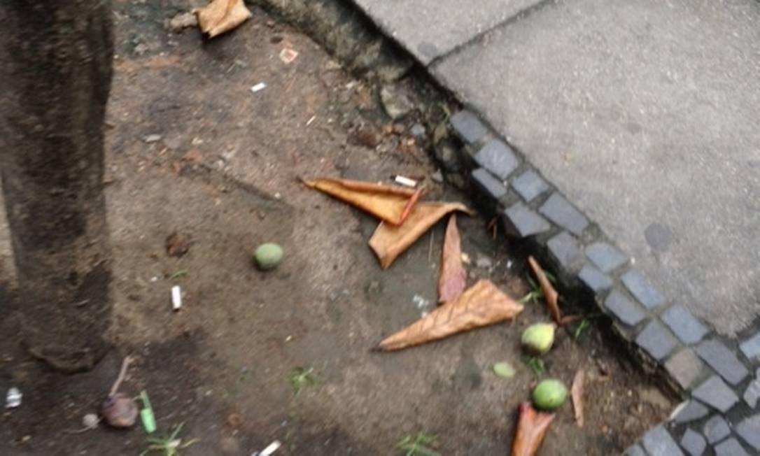 Pedras portuguesas que compõem o calçamento estão desfalcadas Foto do leitor Paulo Caratori / Eu-Repórter