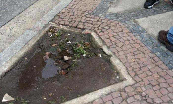 Também há canteiros de terra sem nenhuma árvore Foto do leitor Paulo Caratori / Eu-Repórter