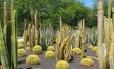 Jardim de Sunnylands, retiro de empresários, políticos e artistas em Rancho Mirage, Califórnia.