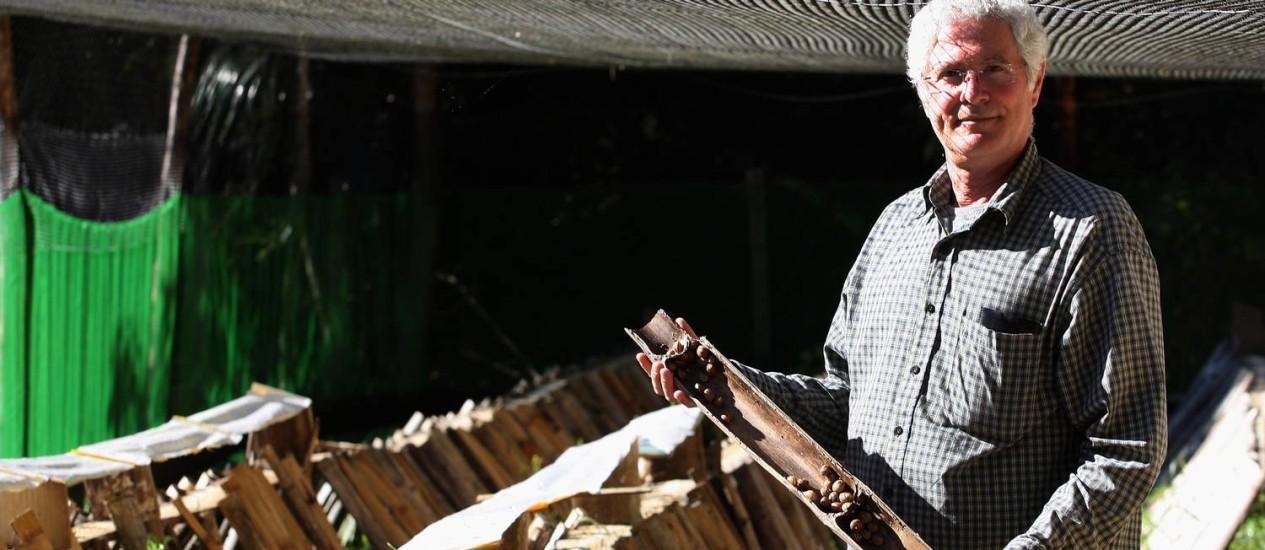 O empresário Alfredo Chaves mostra os escargots criados no sítio Invernada Foto: Márcio Alves / Agência O Globo