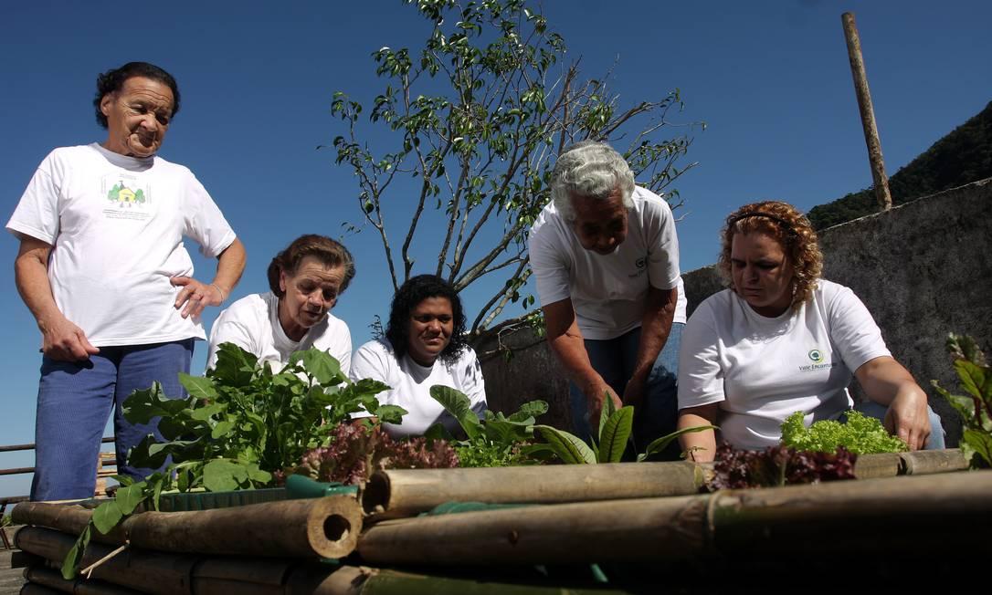 Membros da Cooperativa Vale Encantado, formada em 2006 para promover o turismo na região do Alto da Boa Vista Foto: Foto: Rafael Moraes / O Globo