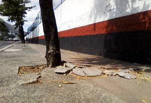 Proximidade de árvore com pista danifica ciclovia da Rua Mário Ribeiro, no Leblon Foto: Foto da leitora Anna Moraes / Eu-repórter